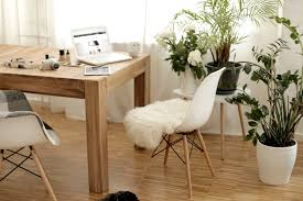 wood and white my mobile work station cats u0026 dogs fashion