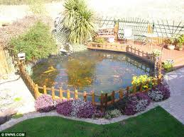 Types Of Fish For Garden Ponds - distraught couple forced to remove 6 000 gallon pond from garden