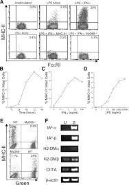 Top Right Or Right Top Inducible Mhc Class Ii Expression By Mast Cells Supports Effector
