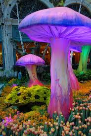 66 best bellagio in vegas images on pinterest las vegas