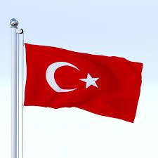 animated turkey flag by dragosburian 3docean