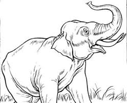 113 kids zoo printables coloring pages clip arts images