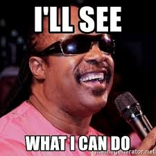 What Can I Do Meme - i ll see what i can do stevie wonder meme generator