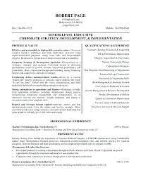 executive resume pdf executive resume sles 2017 executive resume sles resume