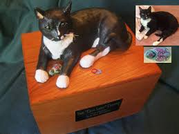pet urns for cats personalized pet urns of your own beloved dog or cat 800 716 2548