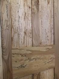 Powder Post Beetles In Hardwood Floors - powder post beetle powderpost beetles pinterest beetles