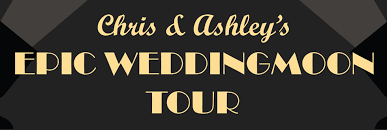 fundraiser by christopher bruce epic wedding moon tour fund