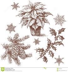 christmas plants set sketch stock vector image 62338238