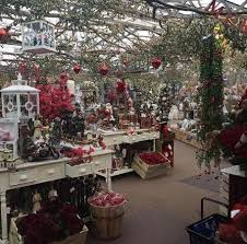 christmas displays christmas displays picture of grosvenor garden centre chester