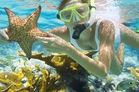 Florida snorkeling images Best snorkeling yacht charter destinations in florida 26 north jpg