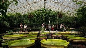 Botanical Gardens Ticket Prices Royal Botanic Gardens Kew Garden Visitlondon