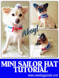 diy dog halloween costume sew diy mini sailor hat