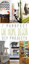 7 purrfect home decor cat diy projects cat kitty and stuffing