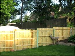 fence ideas for small backyard backyard privacy fence ideas conceptcreative info
