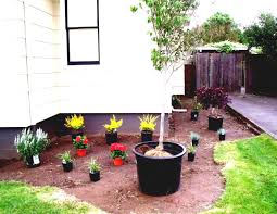 outdoor u0026 garden beautiful front yard landscaping ideas with