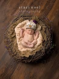 photographers in nc newborn photographer nc photographer staci