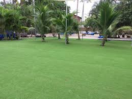 best artificial grass oracle arizona lawn and landscape