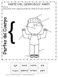free spanish and boy body parts by rosanna robertson tpt