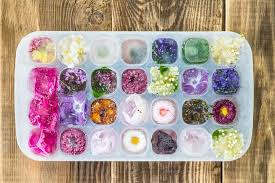 flowers edible dress up cubes with these 9 edible flowers mnn