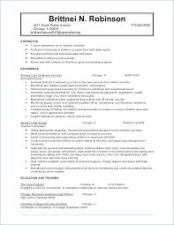 resume exles for child care worker sle resume publicassets us