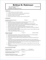 resume exles for child care worker sle resume publicassets us
