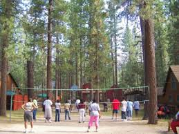 Tree Top Cottage Big Bear by Reserve Big Bear Group Lodging Services At Golden Bear Cottages