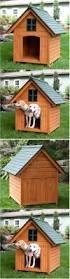 Door For Igloo Dog House Best 25 Dog House Heater Ideas On Pinterest Heated Dog House