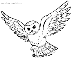 Flying Owl Color Page Coloring Pages Owl