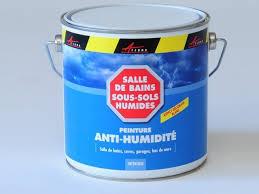 humidité mur intérieur chambre peinture anti moisissure anti humidité murs humides contact