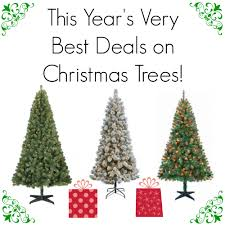 this year s best deals on trees