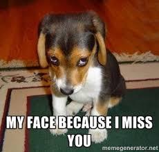 I Miss U Meme - i miss you animal memes image memes at relatably com
