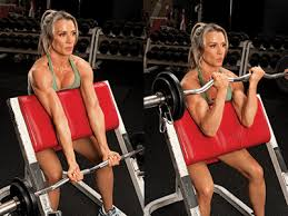 Bench Bicep Curls Preacher Curl Sit In A Preacher Curl Bench And Grab An Ez Curl