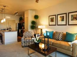 Appealing Apartment Living Room Decorating Ideas On A Budget - Small apartment living room decorating ideas pictures