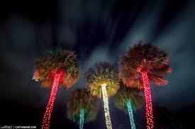landscape lighting south florida christmas tree lights south florida style at snug harbor drive