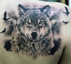 70 wolf designs for masculine idea inspiration