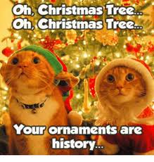25 best memes about oh tree your ornaments are
