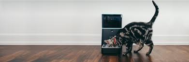 7 must have gadgets for your pet wiproo