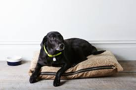 How To Make A Dog Bed How To Make A Dog Bed Even If You Barely Know How To Sew