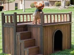 cool dog houses 6 unique dog house designs the doggy dojo
