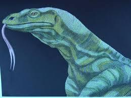 14 animals detail color book komoto dragon images