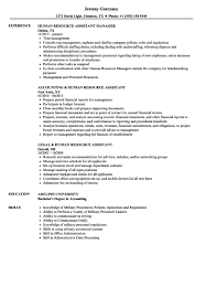 resume summary exles human resources assistant skills human resource assistant resume summary exles human resources