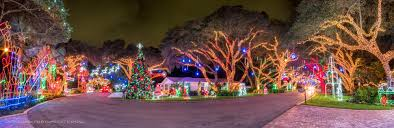 drive by christmas lights snug harbor drive christmas lights palm beach gardens