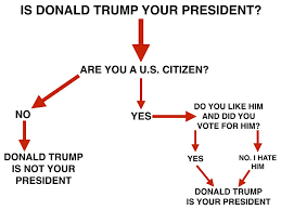 Meme Chart - image result for trump is your president meme flow chart funny