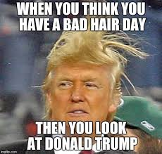 Bad Hair Day Meme - when you think you have a bad hair day then you look at donald