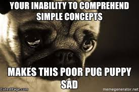 Sad Pug Meme - your inability to comprehend simple concepts makes this poor pug