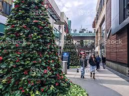 christmas decorations on santa monica streets usa stock photo