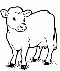 coloring pages cow animals coloring pages for kids printable