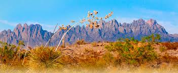 New Mexico travel clubs images Guidelines suntree travel club jpg