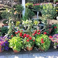 garden center designs by lee
