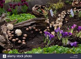 When To Plant Spring Vegetable Garden by Mushroom Garden Soil Green Vegetable Growing Spring Summer Wood